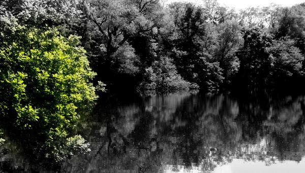 Oberwaldsee