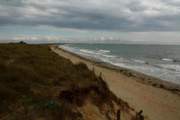 Meer, Strand und Dünen