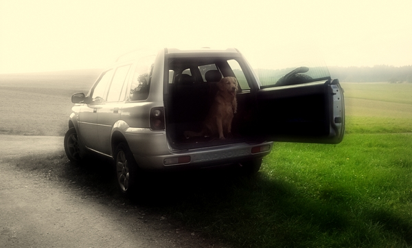 Retriever Landrover