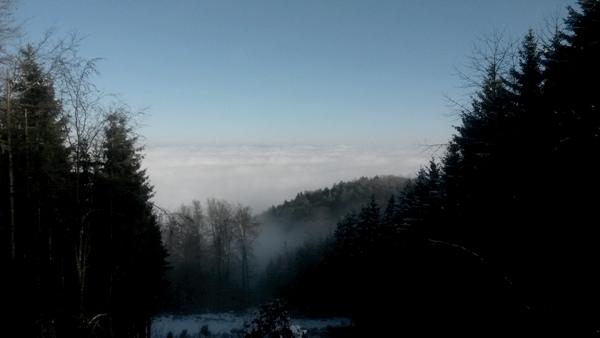 am Schiener Berg