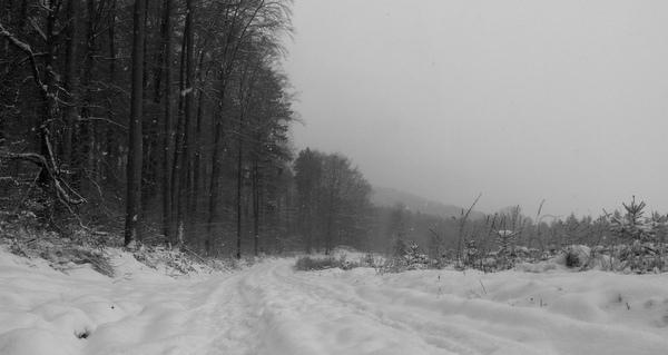 heute schneit es nur ein Mal