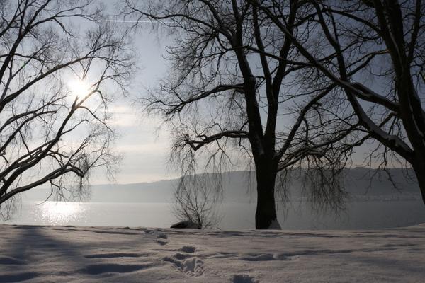 Ufer im Winterschlaf