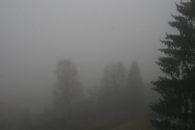 Nebel über Wahlwies