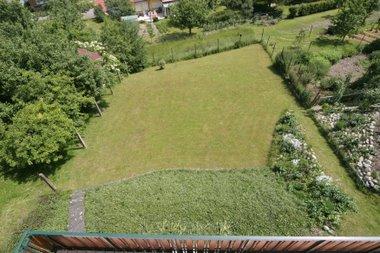 Garten im Juni letztes Jahr