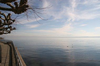 Bodensee bei Meersburg